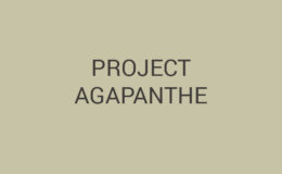 project_agapanthe